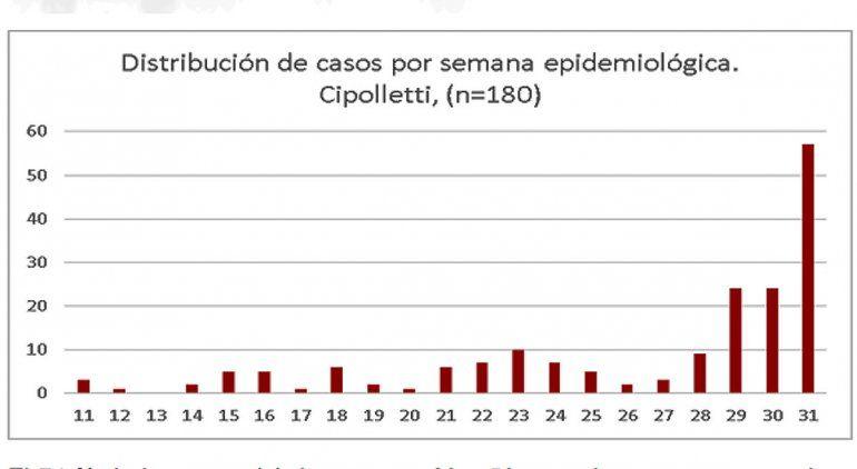 Fuente: Unidad de Vigilancia Epidemiológica del hospital de Cipolletti.