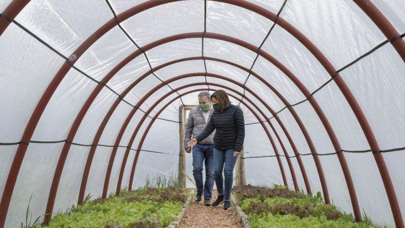 Construyen invernaderos solidarios para promover la soberanía alimentaria