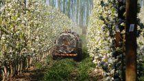 provincia continua con su plan sanitario para productores fruticolas