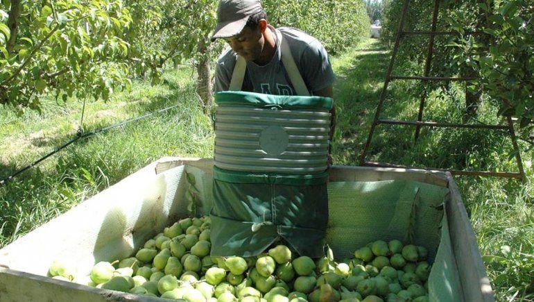Se endurece la negociación salarial en la fruta