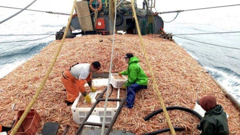 Se adelantó la pesca de langostino y el precio alcanzó 7,20 dólares