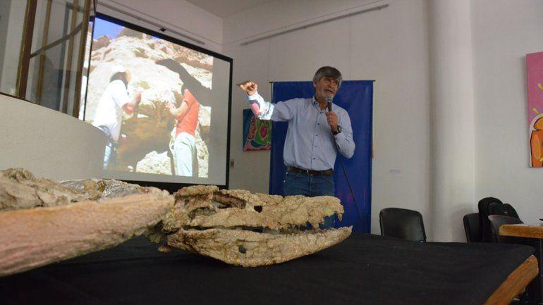 Presentaron en sociedad al cocodrilo del Cretácico de Neuquén