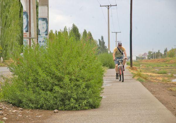 Niegan notorio abandono en la ciclovía