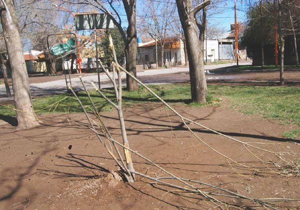 Daños vandálicos en una plaza