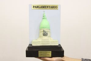 Pichetto recibirá el premio Parlamentario 2012