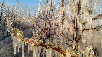 otra manana helada en el alto valle: mira como seguira el clima