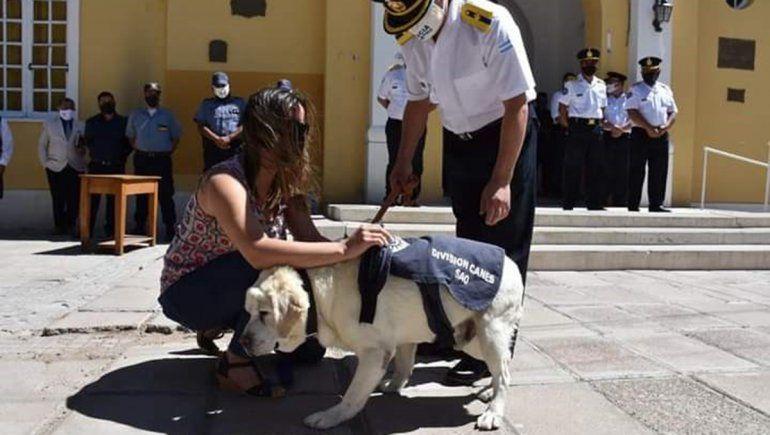 Impulsan ley de adopción de perros que retiran de la Policía