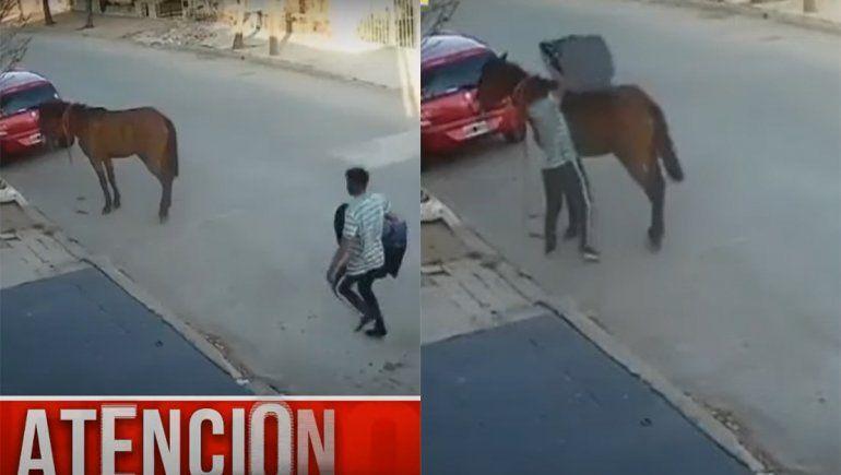 De no creer: se robó una butaca para niños y huyó a caballo