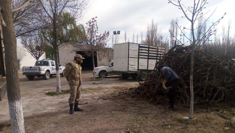 La Brigada Rural incautó 3500 kilos de leña en la Ruta 7