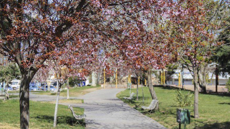 El pronóstico para este domingo:¿Vuelven los días primaverales?