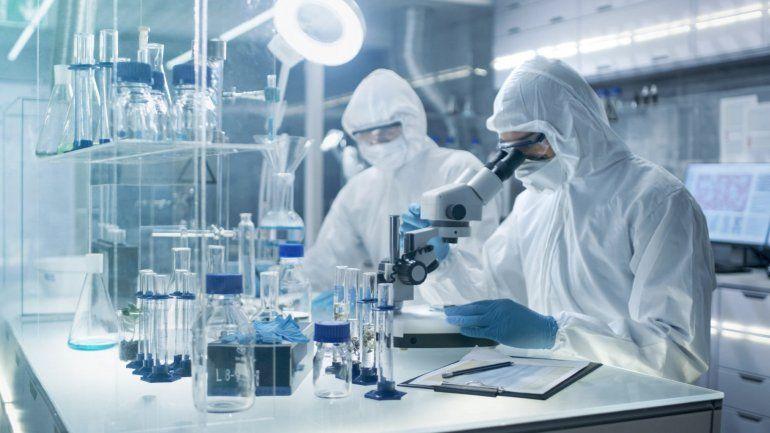 Covid-19: estudian si se podría adquirir inmunidad para toda la vida