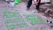 Secuestraron 500 dosis de droga entre marihuana y cocaína