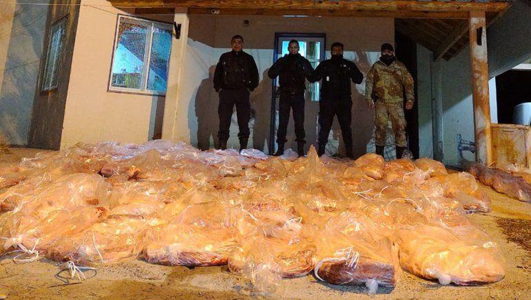 Decomisaron carne y retuvieron un camión que transportaba caballos ilegalmente