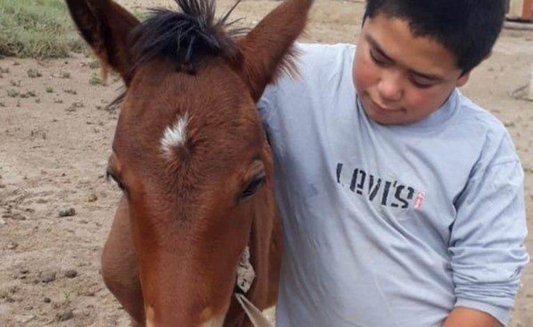 La historia de Gringa, la yegua que paseaba por el Manzanar