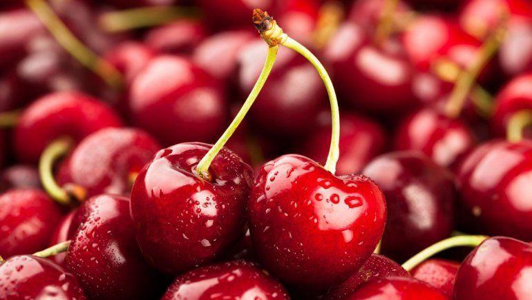 Patagonia lidera la exportación de cerezas
