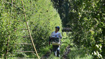Entre los productores, hay satisfacción por el trabajo cumplido pero inquietud por el imparable avance de las urbanizaciones en tierras agrícolas.
