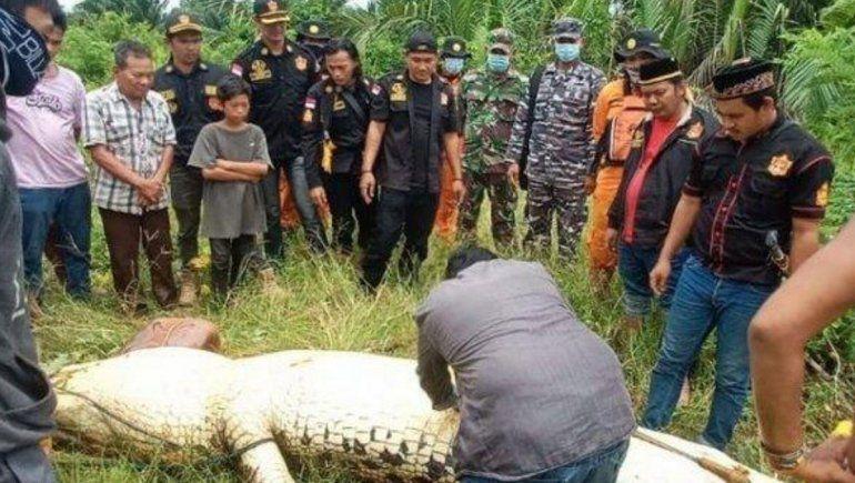 Un cocodrilo se tragó entero a un nene de 8 años