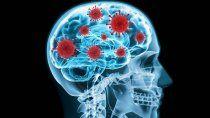 descubren como el coronavirus logra entrar en el cerebro
