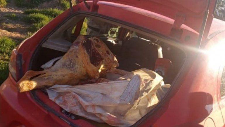 Decomisaron 210 kilos de carne faenada en un operativo sobre la Ruta 23