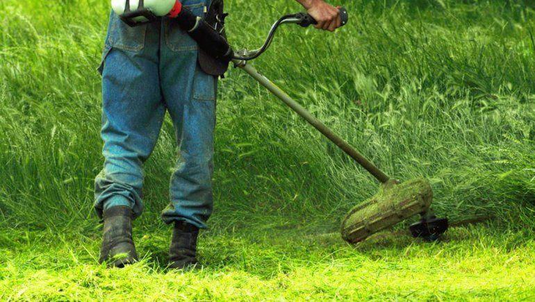 Cinco Saltos: arrancó el relevamiento de terrenos y notificaciones por falta de limpieza