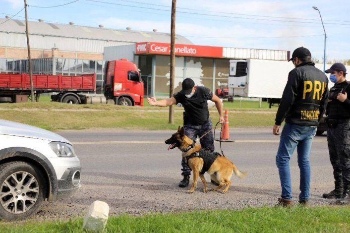 Condenaron a la banda narco que descubrió el perro Máximo