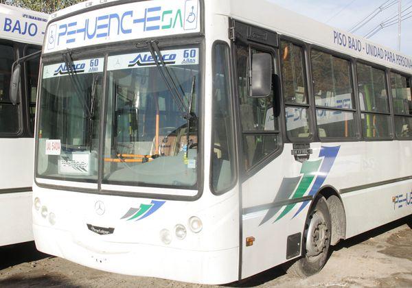 Ómnibus nuevos para el servicio local