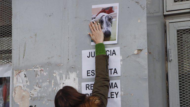 Caso Estelita: Jara fue condenado a 10 meses de prisión en suspenso y deberá pagar $130 mil