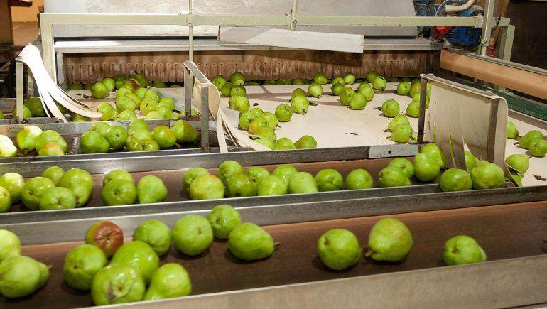 El jugo de pera no pagará arancel de exportación
