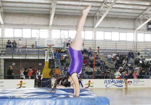 Regional de gimnasia artística