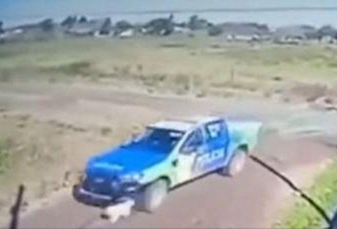 Policías atropellaron adrede a un perro y lo mataron (captura vídeo)