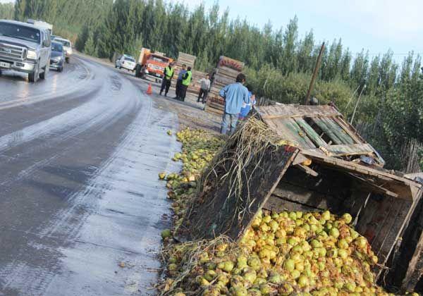 En una maniobra muy riesgosa, a un camión se le cayeron los bines de peras