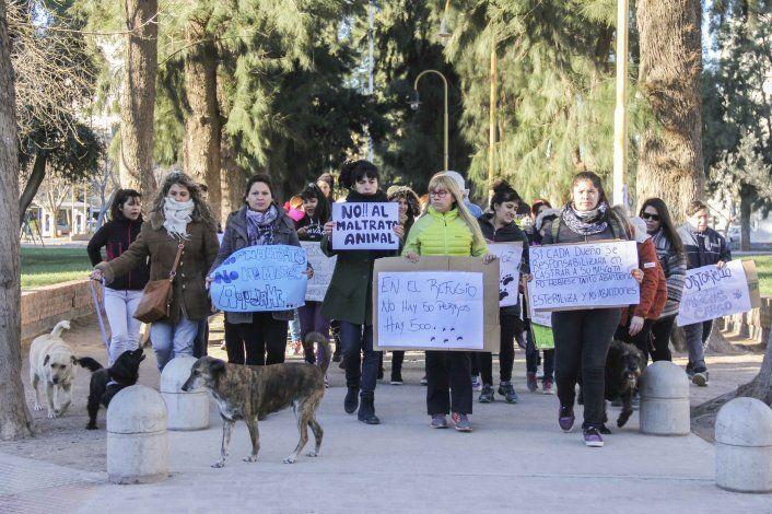Aberrante: otra vez prendieron fuego a un perro en General Roca