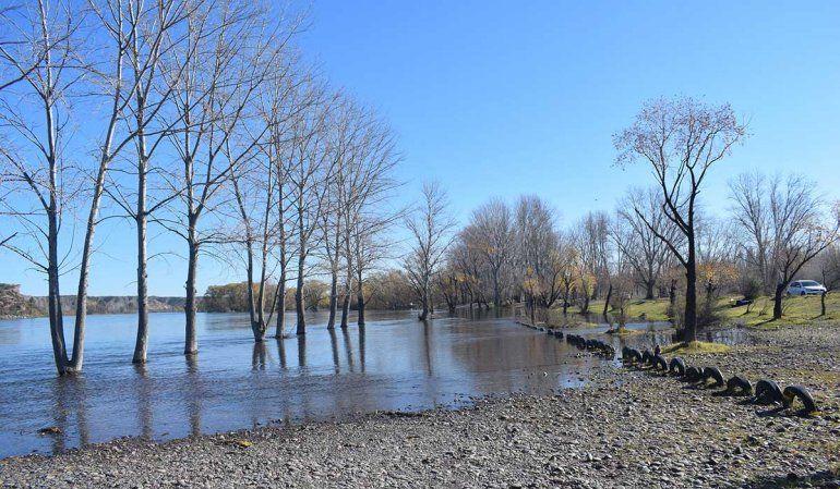 La crecida del río Negro no provocó inconvenientes