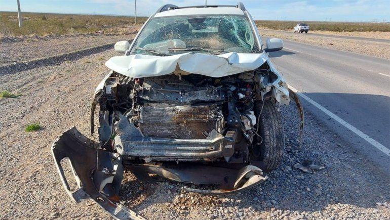 Chocó su camioneta contra un ternero en la Ruta de Vaca Muerta