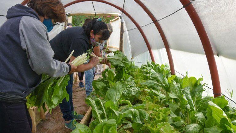 Más de 150 familias de Río Negro accedieron a capacitaciones para producir alimentos