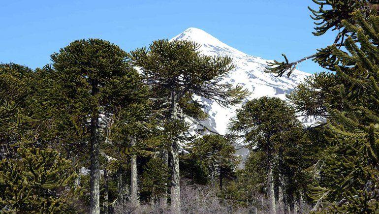 El lunes reabren los Parques Nacionales Lanín y Nahuel Huapi