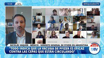 En vivo: diputados se reúnen con laboratorios productores de vacunas