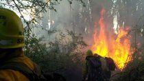 intensa lucha contra el fuego de bosques en el bolson
