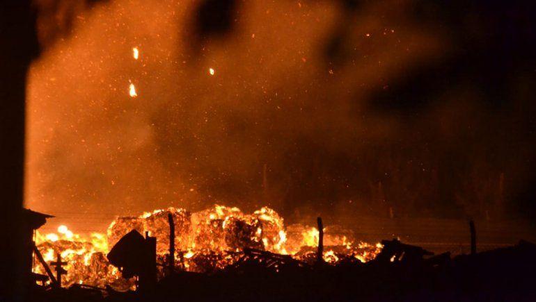En fotos: el voraz incendio de la papelera de la Ruta 151