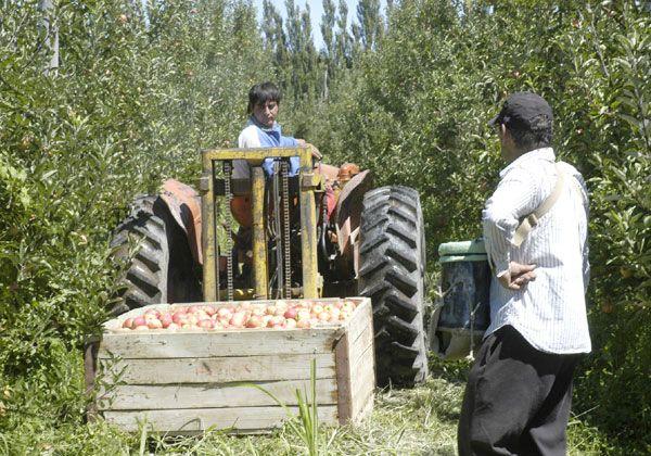 Elevan al Gobernador la propuesta política para el sector frutícola