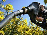 Gobierno extendió el régimen de Promoción de Biocombustibles hasta agosto