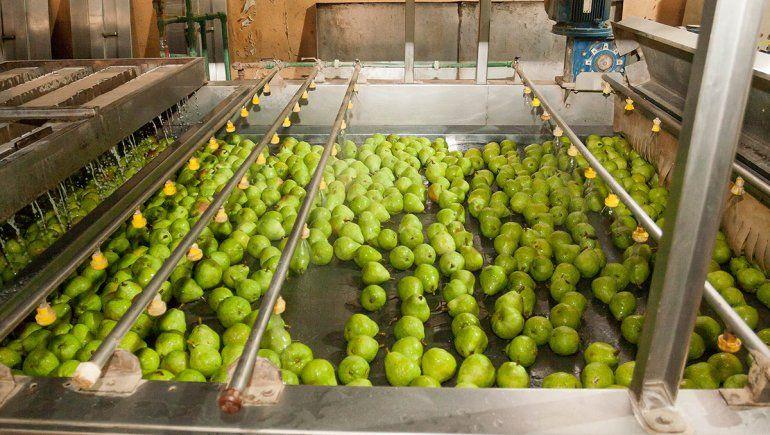 Balance dispar sobre la cosecha entre productores locales