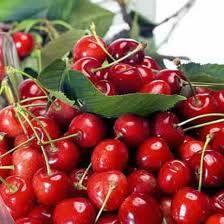 Importantes mermas en la producción de cerezas en la región