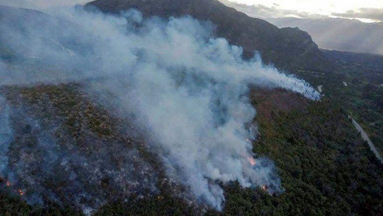 Proponen penas más duras para quienes originen incendios forestales