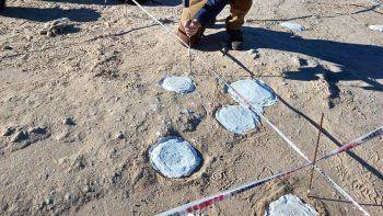 la unco hace historia con el hallazgo de 200 huevos fosiles