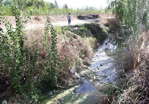 Planifican trabajos para sanear canales de Cipolletti