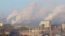 video: temor por el intenso humo de las papeleras de cipolletti