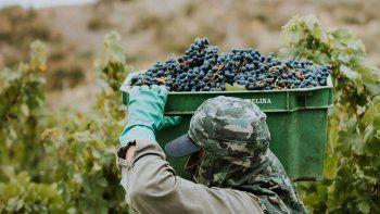los vinos argentinos generan mas empleo y dolares que la soja