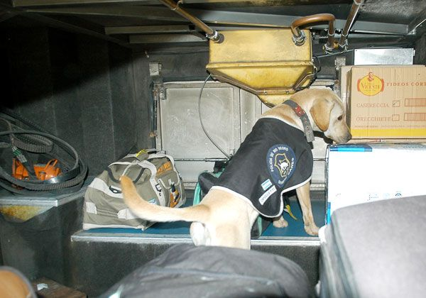 Secuestran camioneta que había sido robada en Merlo
