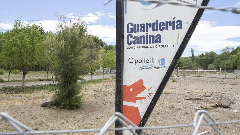 Los perros alojados en el sector denominado de Chuliber son fuente de preocupación para las proteccionistas.
